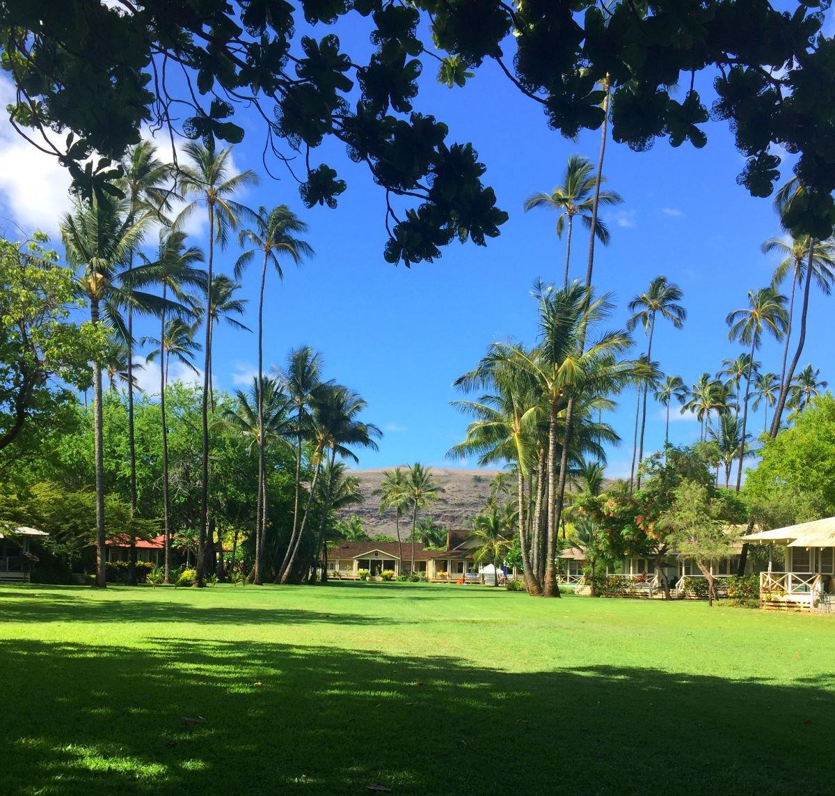huge lawn of waimea plantation cottages kauai