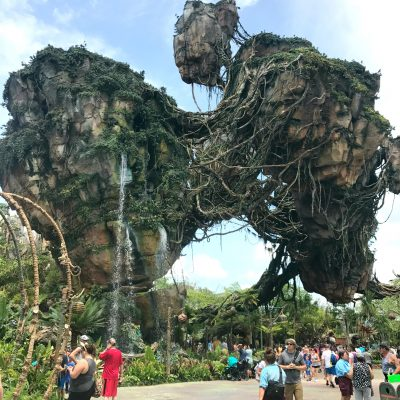 DisneyWorld Animal Kingdom's Pandora: Flight of Passage Review