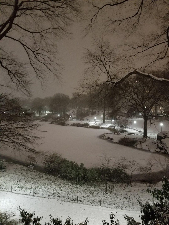 snowy scene of Central Park