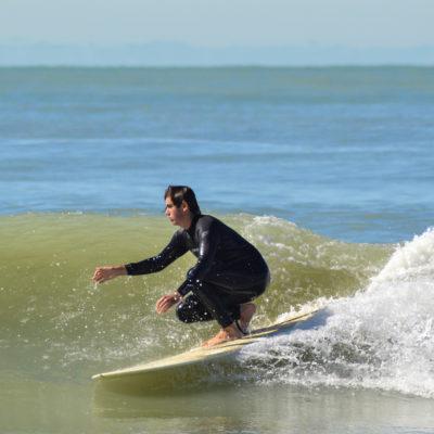 Sarasota Surf